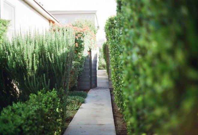 garden-way